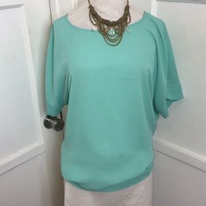 The Limited Tops - The limited mint blouse